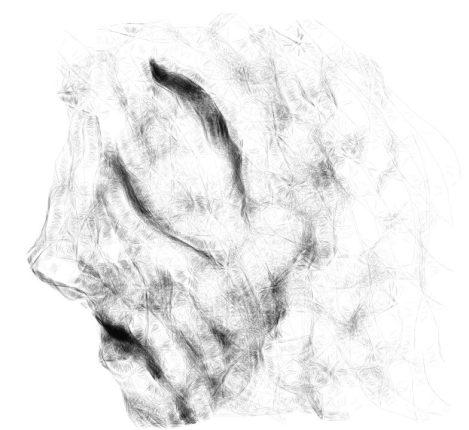 Canvas 29