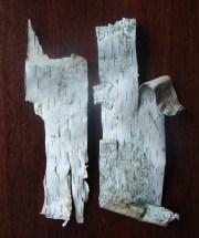Birch Scrolls