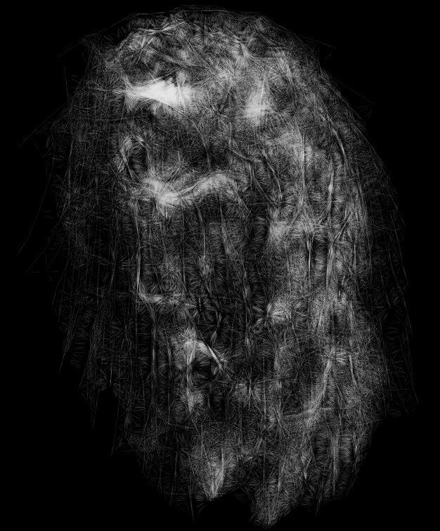 Canvas 355 — white on black, February 3, 2014